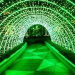 36汐留シティ光のトンネル