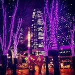 48LOVE裏紫