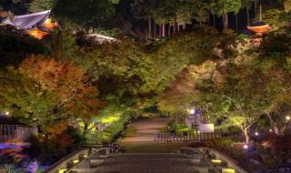 141102_katsuoji_004